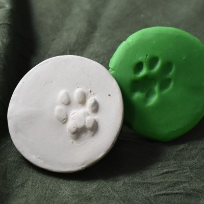 Cat Pawprint 1 Cookie Stamp